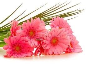 Съедобная картинка Букет цветов № 01269, лист А4. Вафельная/сахарная картинка. - фото 4685
