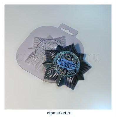 Форма для шоколада Орден Лучший папа. Материал: пластик. Размер: 9,5 х 9 х1,5 см. - фото 6026
