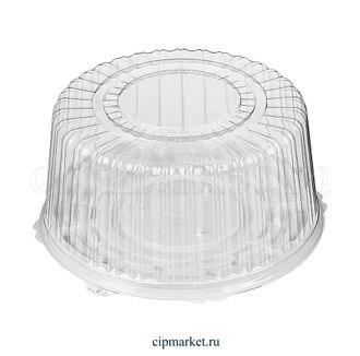 Коробка для торта №2. Материал: пластик. Россия. Размер внутренний: 26,3*11 см - фото 7006
