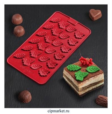 Форма для шоколада и конфет Листики. Размер: 21*11 см - фото 8334