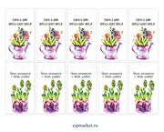 Набор бирочек микс В душе весна (Цветы в лейке). Набор 10 шт. Размер: 5х9 см