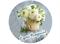 Съедобная картинка Цветы: С Днем Рождения № 01315, лист А4. Вафельная/сахарная картинка. - фото 5057