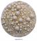 Посыпка шарики Белые Ассорти микс №108 драже зерновое. Вес: 50 гр - фото 8727